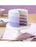 Set 5 moldes layer cake Wilton