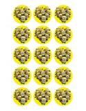 Papel de azúcar Minions para galletas Nº101