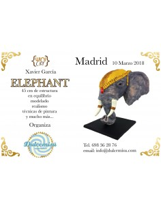 Master class elephant