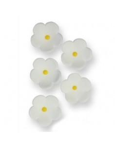 flores azúcar blancas