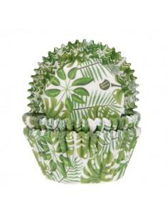 Surtido capsulas hojas tropicales