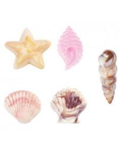 Molde conchas de mar para chocolate