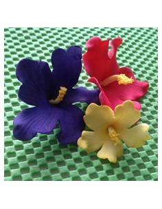 Cortadores flores hawaianas