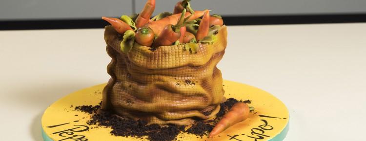 tarta-fondant-mostoles