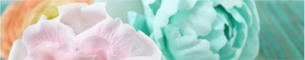 Comprar moldes, nervadores y texturizadores  | Dulcemisú
